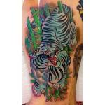 dusty blue tiger